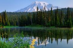 Visit Rainier