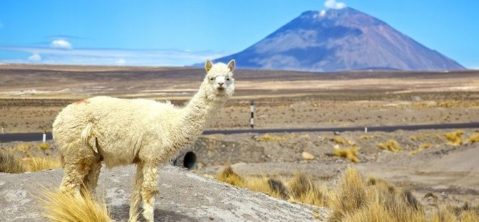 "The ""Perfect Ten"" South American Destinations"