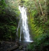 Waterfalls Hikes on the Olympic Peninsula