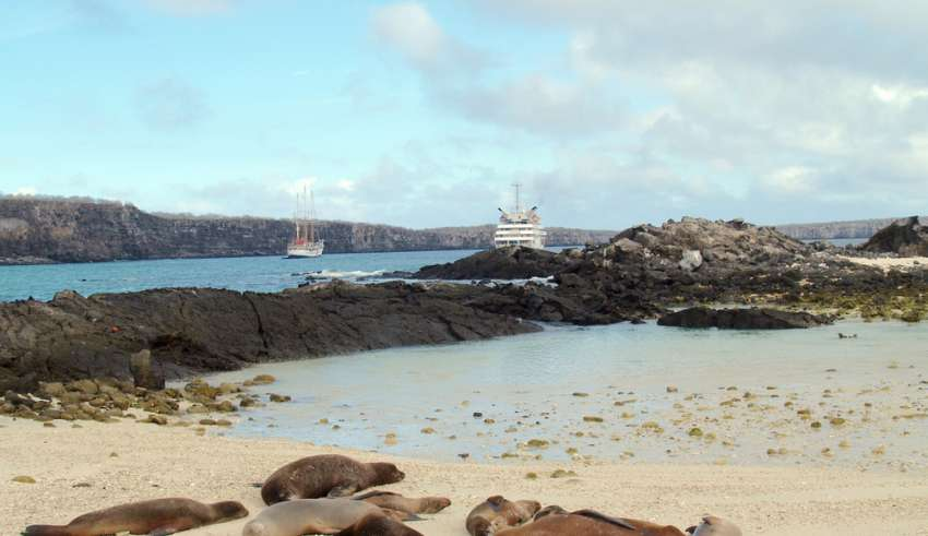 TRAVEL DAILY USA | 10+1 Facts of Cruising the Galapagos Islands