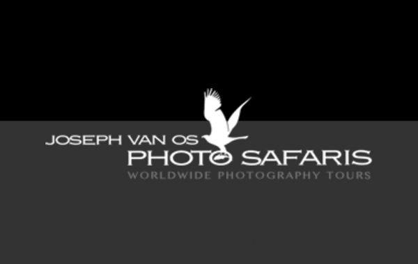 Joseph Van Os Photo Safaris